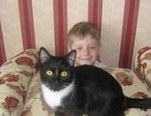 Черный кот на страже