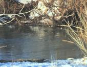 Журчащая река
