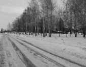 деревенская дорога весной