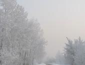 """Сказочная дорога"""