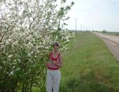 """""""У дороги  яблони цветут..."""""""