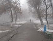 Утренний весенний туман.