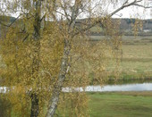 Осень над Соротью