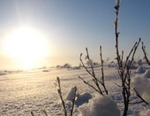 Солнце над тундрой