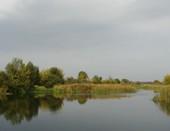 Осенняя грусть реки
