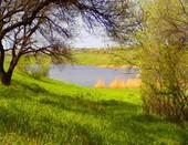 городской пруд недалеко от дома