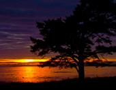Закат. Финский залив. Ленинградская область