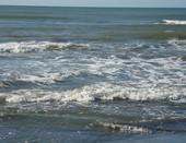 Черное синее море моё