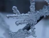 Узоры зимы