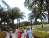 Прогулка по тропикам...