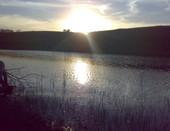 Семеновский пруд в селе Понамаревка