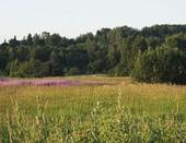 Природа, пейзаж.