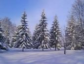 ах зима