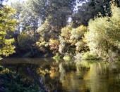 осень на реке Оскол