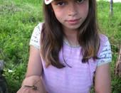 сестра - стрекоза
