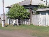В деревеньке